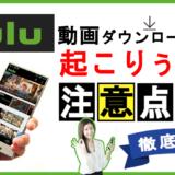 huluの動画ダウンロード