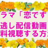 【恋です!動画】見逃し配信を無料視聴する方法!1話~最終回まで一気見できる!